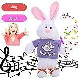 Happy Event Kawaii Entzückendes elektronisches Häschen-Tanzen, Das Musik angefülltes Plüsch-Spielzeug für Kinder singt