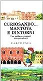 Image de Curiosando... Mantova e dintorni. Una guida per ra