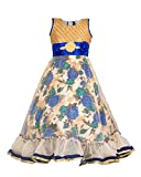 Best 3 Year Old Girl - My Lil Princess Girls Blue Roses Dress Net Review