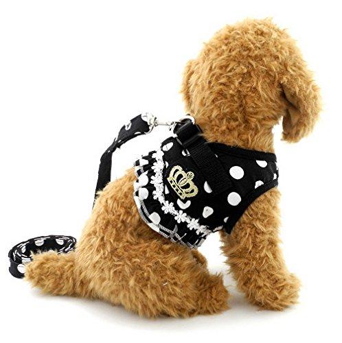 selmai Puppy klein Katze Mädchen Hund Vest Dots Harness Leine-Set Mesh Gepolsterte kein Ziehen Blei (Dot Mesh Halter)