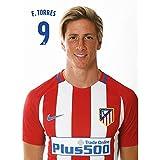 Grupo Erik Editores Atletico Madrid F. Torres - Postal 2016/2017
