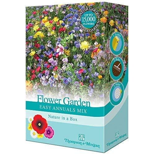 gemischte Cottage Garden Blumen Samen jährlich Bauen Sie Ihr eigenes an Farbenreich Pflanzen wie Kornblumen, Malve & Ringelblumen 1 x 15g Pack von Thompson & Morgan -