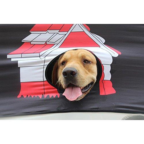 Haus Haustier Muster Hundezaun reisender Hundegrill Schutz Fenster Lüftungs Ventilator Auto teleskopischer Sicherheitszaun über Leitschiene