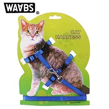 WAABS Harnais pour Chat - Collier Ajustable en Nylon avec Laisse Offerte pour Chat (Bleu)