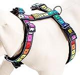 Max & Molly Harness Hundegeschirr in verschiedenen Größen und Designs (M, Movie)
