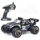 Wincreative 1:16 Skala elektrische RC Auto Off Road Fahrzeug 2,4 GHz Radio Fernbedienung Auto 2W High Speed Racing Monster Truck