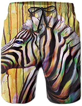 Colorful Zebra Art Painting Men's/Boys Casual Swim Trunks Short Elastic Waist Beach Pants with Pockets