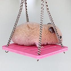 Yesiidor Wood Swing pour animal domestique Animal à suspendre balançoire pour hamster S cochons d'Inde Funny Toys Play Toys Jouet à mâcher Petit Terrain de Jeux As description bleu