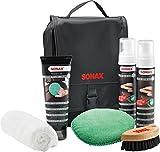 SONAX 281941 PremiumClass LederPflegeSet
