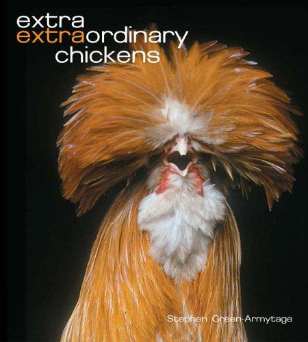 Extra Extraordinary Chickens