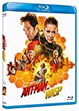 Locandina Ant-Man And The Wasp