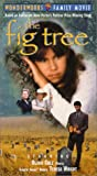 The Fig Tree [VHS]