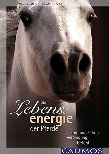Die Lebensenergie der Pferde: Kommunikation, Verbindung, Gefühl (Das Pferd Verhalten Handbuch)