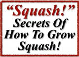 Squash | Gardening | Squashed | Squashes and How To Grow Them