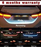 Car Lights Review and Comparison