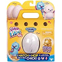Little Live Pets S1 Baby Chick Single Pk Asrt