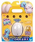Best Chicks - Little Live Pets 28324 Surprise Chick Toy Review
