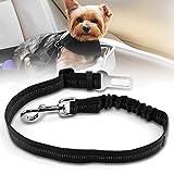 Poppypet Hunde Sicherheitsgurt fürs Auto, Hundegeschirr Auto mit Besonders Elastischer Ruckdämpfung Nylon 55 bis 75 cm Einstellbar - Passend für Alle Hunderassen