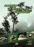 Amphibien & Reptilien Südostasiens