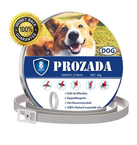 PROZADA Natural Collar Antiparasitario para Perros (8 Meses) Prevención de Pulgas y...
