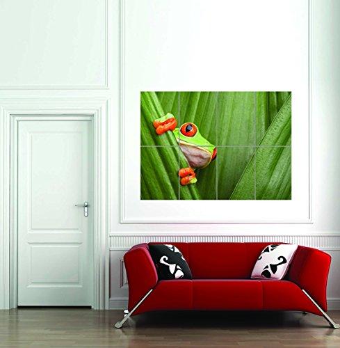 Doppelganger33 LTD Red Eyed Tree Frog Face Leaf Giant Wall Art Print Home Decor Poster -