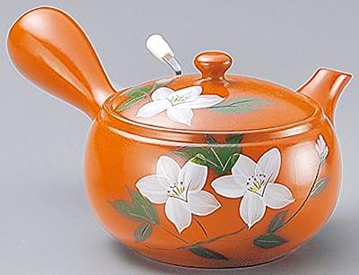 Yamakiikai poterie Orange Kyusu(théière Japonaise) avec des Fleurs blanches avec une passoire 520cc GM953