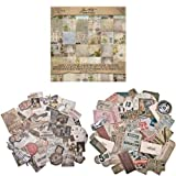 Tim Holtz Idea-Ology Wall Flower Paper Stash Pad, Pack of 36 + Thrift-Shop Ephemera Pack + Expedition Ephemera Pack