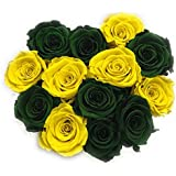 ETERNAL ROSES, konservierte Rosen, XL Olive Green & Yellow in Geschenkbox