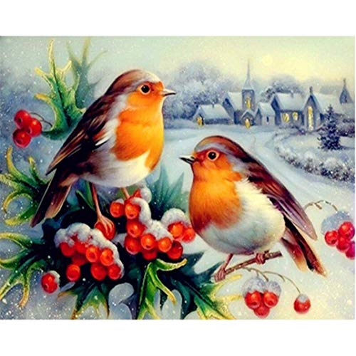 Sunnay Diamond Painting, Zwei Vogel Frucht Blume 5D DIY Diamant Malerei Stickerei Full Drill Crystal Strass Bilder Kreuzstich Handwerk für Home Wall Decor Kreuzstich Kit (Hot, 30 * 40cm)