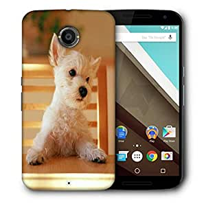 Snoogg Puppy Sitting In Chair Designer Protective Phone Back Case Cover For Motorola Nexus 6