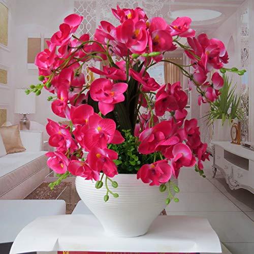 Schmetterlingsorchidee Schmetterlings-Orchidee gefälschte