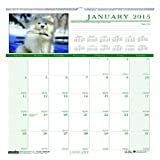 House of Doolittle Earthscapes Puppy Wandkalender 12 Monate, Januar 2015 bis Dezember 2015, 30,5 x 30,5 cm, Full Color Foto, recyceltem (hod3651–15)