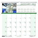House of Doolittle Earthscapes Puppy Wandkalender 12Monate, Januar 2015bis Dezember 2015, 30,5x 30,5cm, Full Color Foto, recyceltem (hod3651–15)