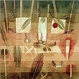 Posterlounge Leinwandbild 120 x 120 cm: Physiognomie Einer Anpflanzung von Paul Klee/akg-Images - fertiges Wandbild, Bild auf Keilrahmen, Fertigbild auf echter Leinwand, Leinwanddruck