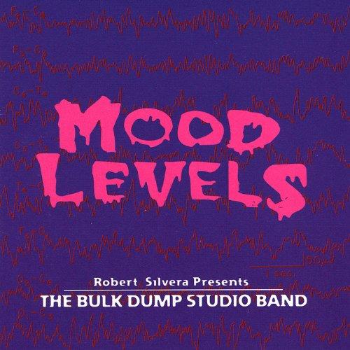 Mood Levels (Pop Bulk Rocks)
