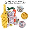 GXL Dog Toys Set, Washable Cotton Rope 5 Pieces of Pet Chew Toys Including Rope Carrot, Elephant, Dog Bear, Rope Bone, Cotton Ball, Durable Toys for Small and Medium Sized Dogs from GXL