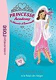 Princesse Academy 44 - Le palais des neiges