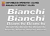 PEGATINAS BIANCHI F179 VINILO ADESIVI DECAL AUFKLEBER MTB STICKERS BIKE BLANCO