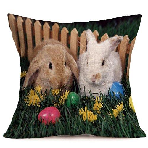 Jamicy Pasqua Festival divano-letto casa decorativo Ultra-velluto 45cm * 45 centimetri federa F