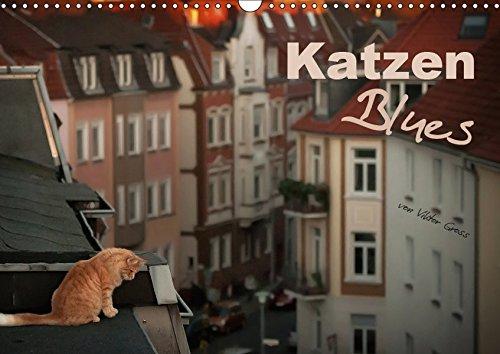 Katzen Blues (Wandkalender 2019 DIN A3 quer): über den Dächern von Münster (Monatskalender, 14 Seiten ) (CALVENDO Tiere)