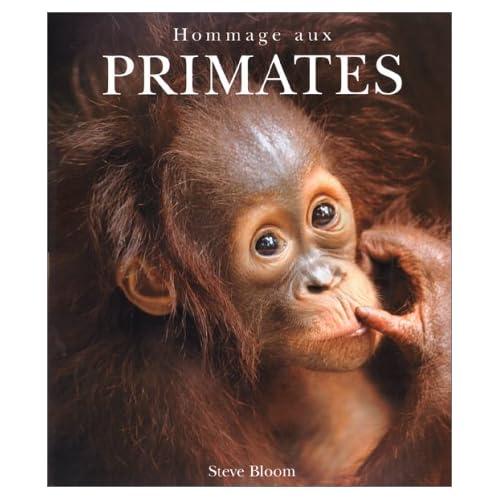 Hommage aux primates