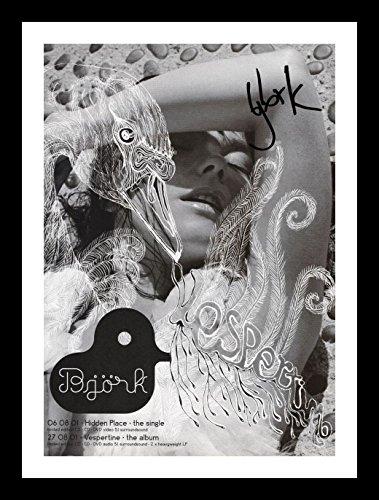Bjork Autogramme Signiert Und Gerahmt Foto Bjork Fotos
