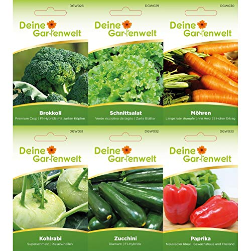 Gemüsesortiment   Gemüse-Set mit 12 Sorten Samen   Gemüsesamen-Sortiment   Saatgut für den Gemüsegarten - 3