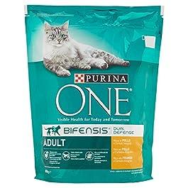 Purina Alimento Completo per Gatti Adulti, Ricco in Pollo e Cereali Integrali – 800 gr