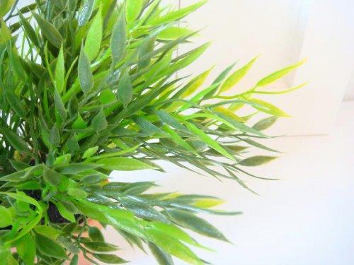 Bambus im Topf Pflanze Bambus grün Deko Dekoblume Blume künstlich Kunstpflanze 25cm