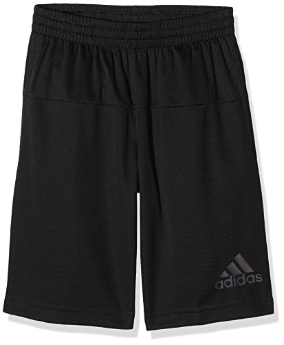 adidas Jungen Gym Horizon Shorts