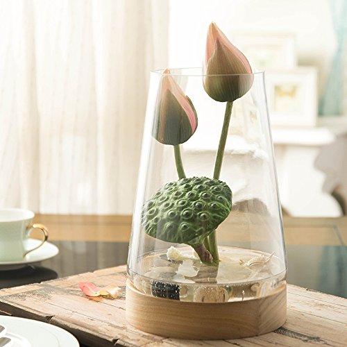 Xin Pang Seerose Blumen Emulation Blume Künstliche Blumen Wohnzimmer Blumen Möbel Glas Vasen Ornamente, niedriges Profil