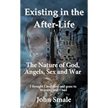 Existing in the After-Life, a Metaphor of Life on Earth and the Reality of What Happens in the After-Life... by John Smale (2013-07-05)