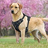 Idepet No-Pull Dog Harness Vest with Handle,Adjustable Reflective Pet Harness Vest Easy Control for Small Medium Large Dogs Training Walking Hiking Black (M)