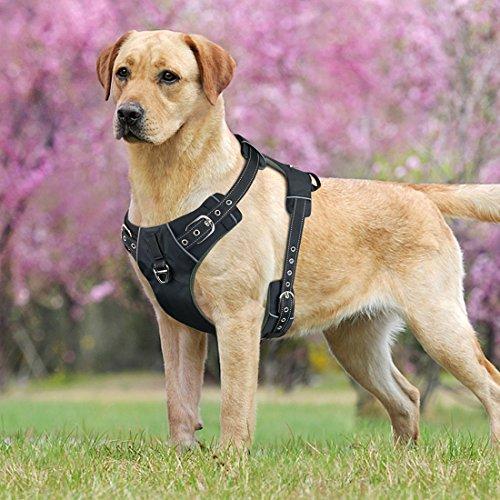 Idepet Hundegeschirr, kein Ziehen, verstellbar, Weiches Air-Mesh-Hundegeschirr, reflektierend, atmungsaktiv, Leichtes Hundegeschirr für Kleine, mittelgroße und große Hunde